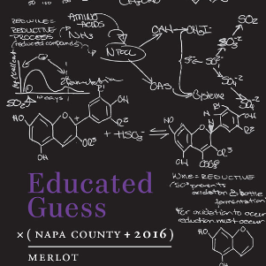 Educated Guess Merlot